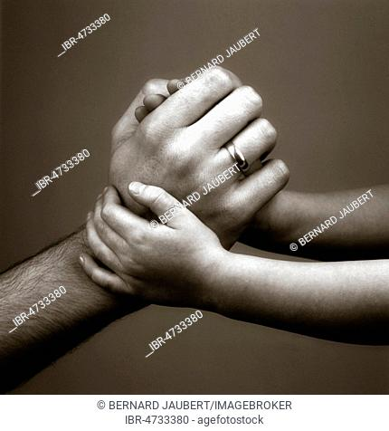 Child's hands holding father's hand, studio shot, symbol picture, France