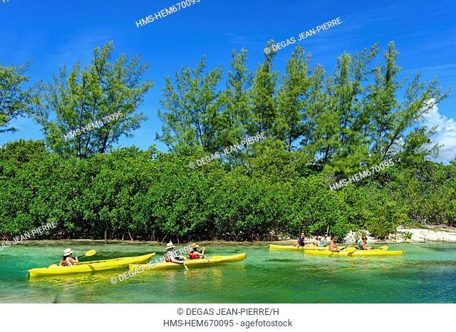 Bahamas, Grand Bahama Island, Old Freetown, Lucayan National Park, Canoe-Kayak thread in mangrove waters of emerald