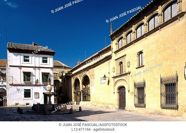 Museum of Fine Arts, Plaza del Potro, Córdoba, Spain