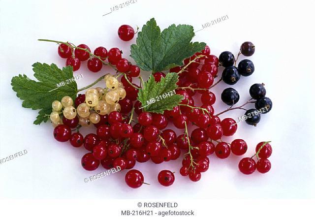 Currants, Fruit, Still life
