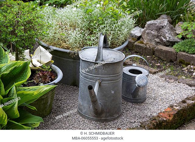zinc watering cans with plants in the garden