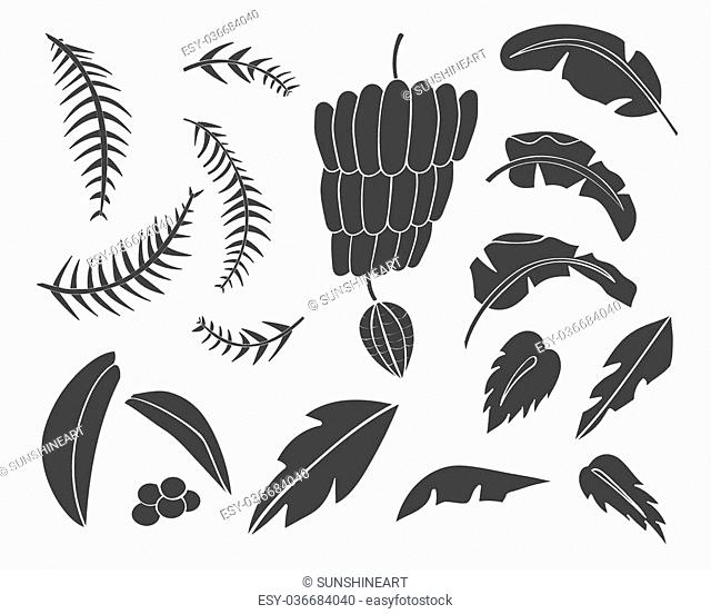 Vector set of black silhouettes of tropical leaves, palm trees, foliage. Hand drawn design elements of a tropical nature