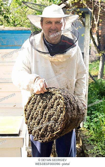 Bulgaria, Pleven, smiling beekeeper with honeycombs