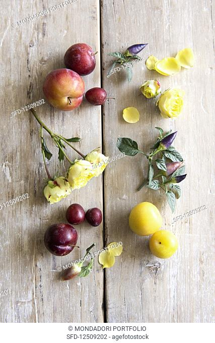 Various plums, yellow rose petals and chillis on a twig