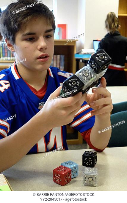 7th Grade Boy Working With Robotics, Wellsville, New York, USA