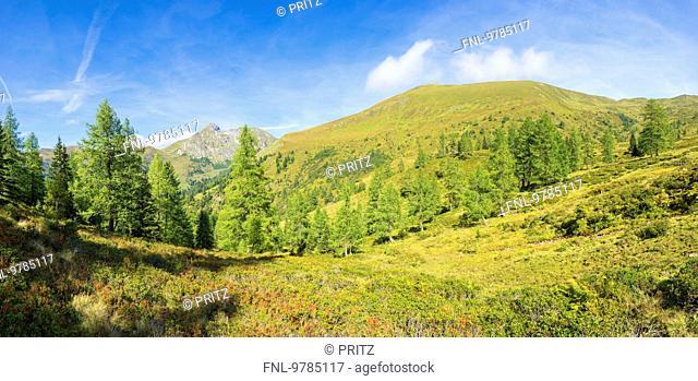 Karteisalm, Hohe Tauern, Grossarltal, Pongau, Salzburger Land, Austria, Europe