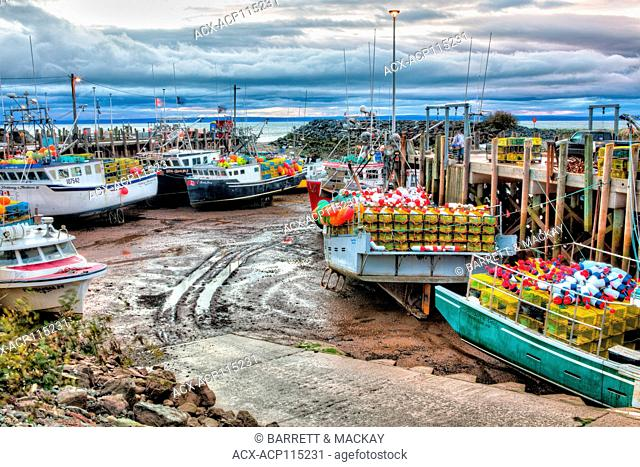 Fishing boats at low tide, Bay of Fundy, Alma, New Brunswick, Canada