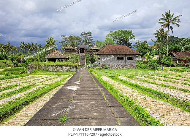 Rice field and little temple in the rural village Sideman in the Karangasem Regency, Bali, Indonesia