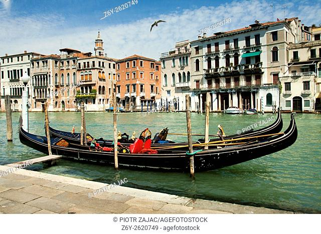 Moored gondolas on Canal Grande in Venice, Italy