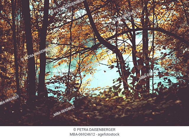 A lake in the Bavarian alps in autumn
