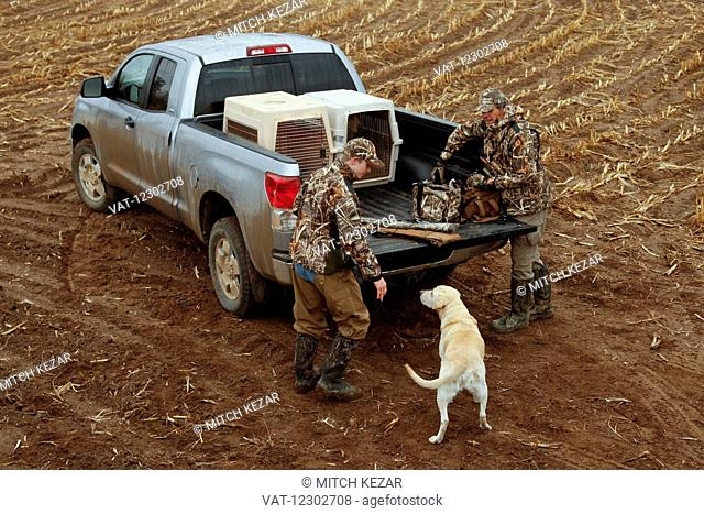 Hunters Loading Truck With Yellow Lab