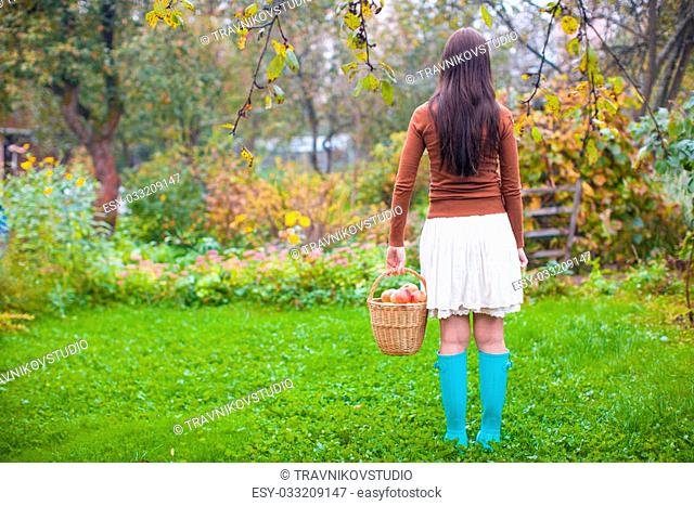 Rear view of Young woman in rubber boots holding the straw basket with red apples at autumn time