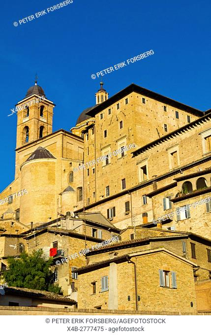 Duomo, residential houses and other buildings, centro storico, Urbino, Marche, Italy