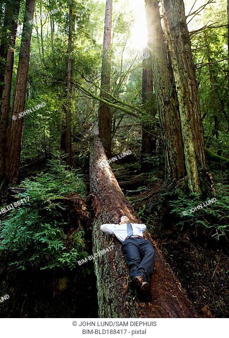 Hispanic businessman laying on fallen tree