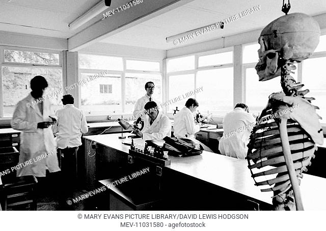 Schoolboys and teachers at work in the science laboratory with a skeleton in the foreground at Atlantic College (United World College of the Atlantic)