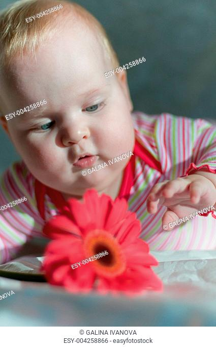 Baby with gerbera