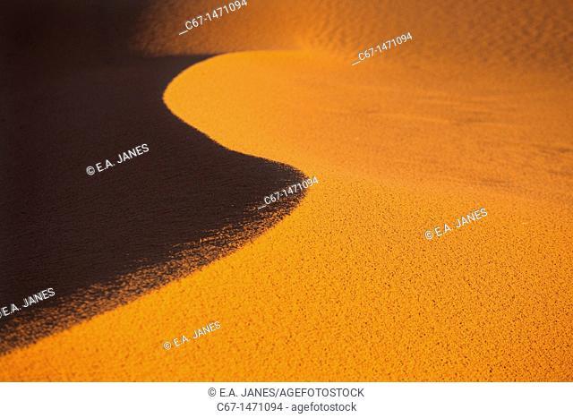 Erg Chebbi Dunes Sahara Desert Morocco North Africa March