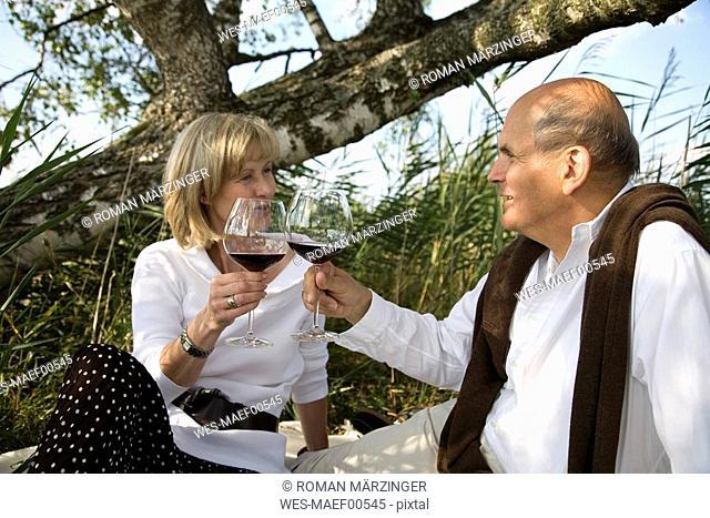 Mature couple having picnic