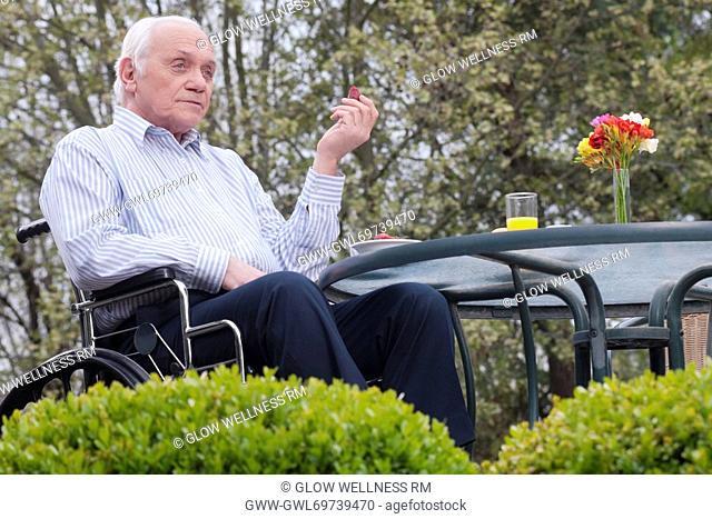 Man sitting in wheelchair in a garden