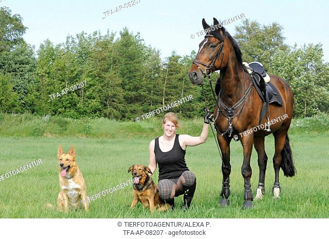 woman with Hanoverian and dogs