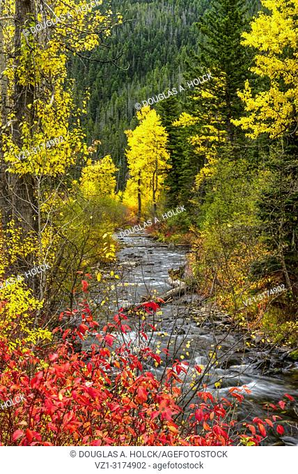 A Montana Fall along the Hyalite River USA