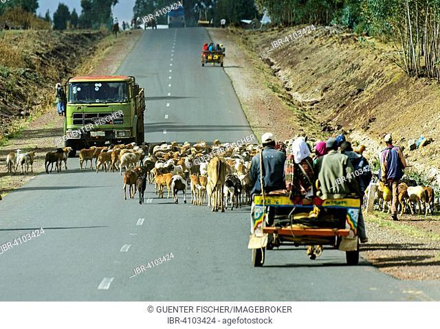 Asphalted road no. 8 between Adama, also known as Nazareth, and Dodola, Mt. Enkolo behind, Oromia Region, Ethiopia