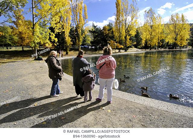 People with swans and ducks by the Osseja lake in autumn, Pyrenees-Orientales, Languedoc-Roussillon, France