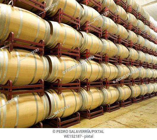 stacked wine barrels to ferment the wine, La Rioja, Spain