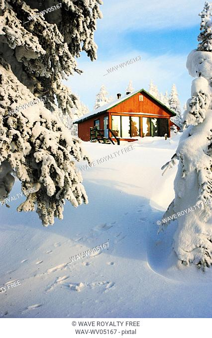 View of La Nictale shelter and snow-covered trees, Quebec, Canada