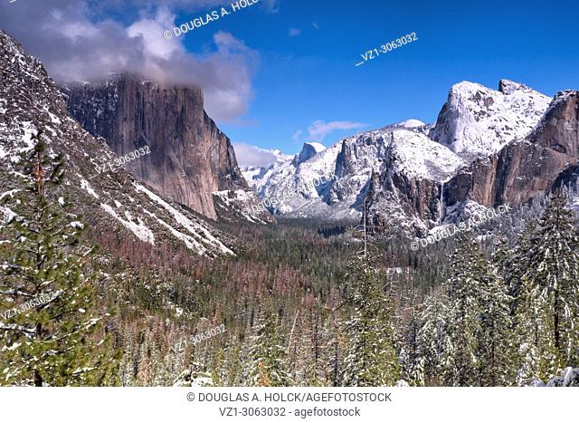 Spring Snow on Yosemite Valley, Yosemite NP, USA