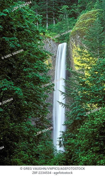 Latourel Falls in the Columbia River Gorge National Scenic Area, Oregon
