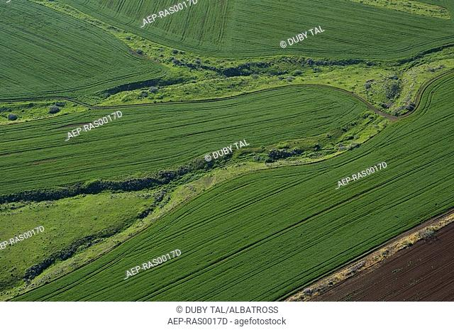 Aerial photograph of a green field in Israel