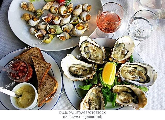 Sea snails and oysters from Bouzigues, Sete, Herault, Languedoc-Roussillon, France