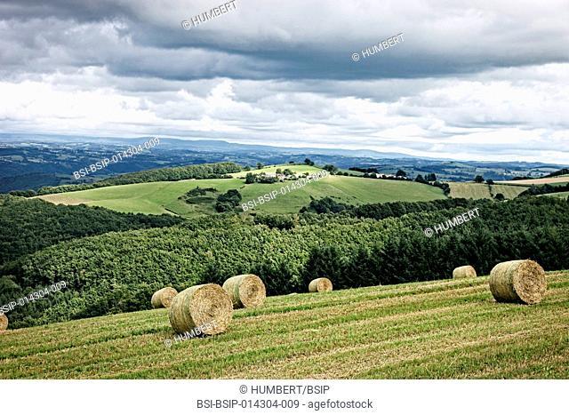 Cantal landscape in Auvergne, France