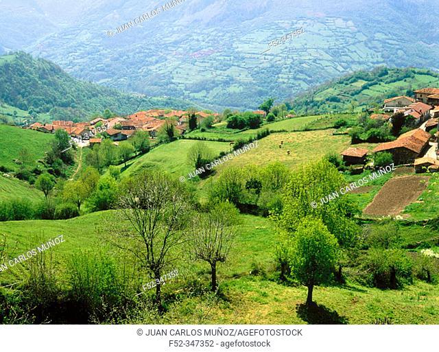 Bermiego. Sierra del Áramo. Quirós. Asturias. Spain