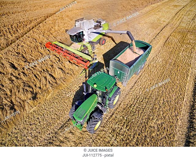Aerial view of combine harvester filling tractor trailer in barley field