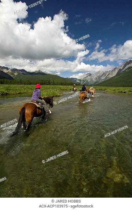 Elk Valley Guide Outfitters lead a group of Horsback Riders through Cadorna Creek, British Columbia, Canada