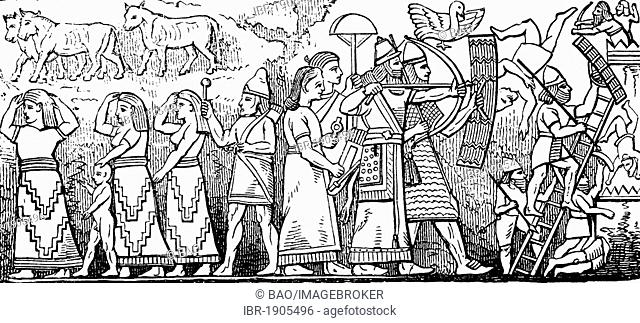 Assyrian relief, Assyria, present day Iraq, woodcut from 1880
