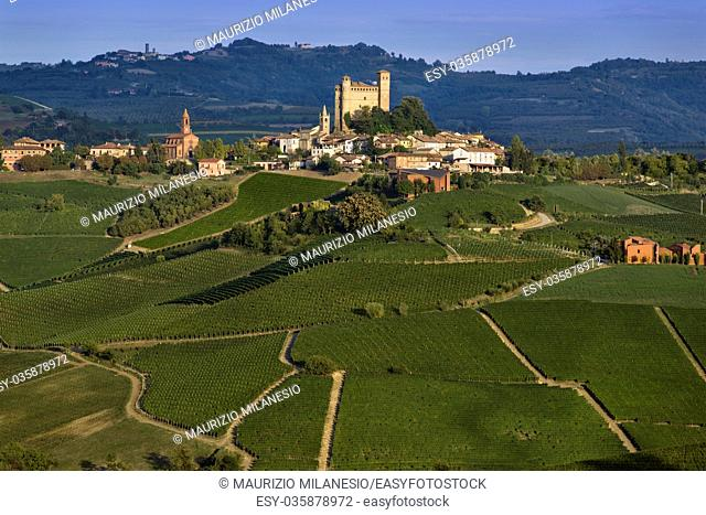 View over the village of Serralunga d'Alba and the wonderful hills with green vineyards of Langa, Piedmont
