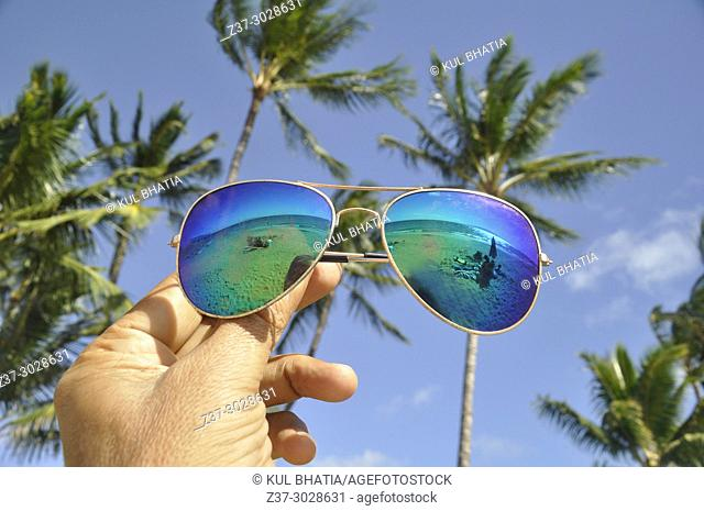 Trendy sunglasses reflect the ocean against the out-of-focus palm trees in the background, Kamaole Beach, Maui, Hawaii, USA