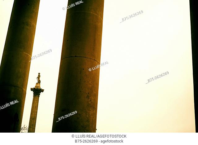 View of the Nelson's Column in Trafalgar Square, The National from Gallery. London, England, United Kingdom, Europe