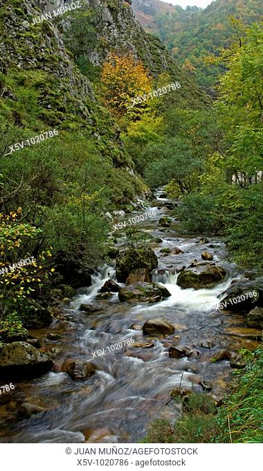 Redes Natural Park. Asturias. Spain