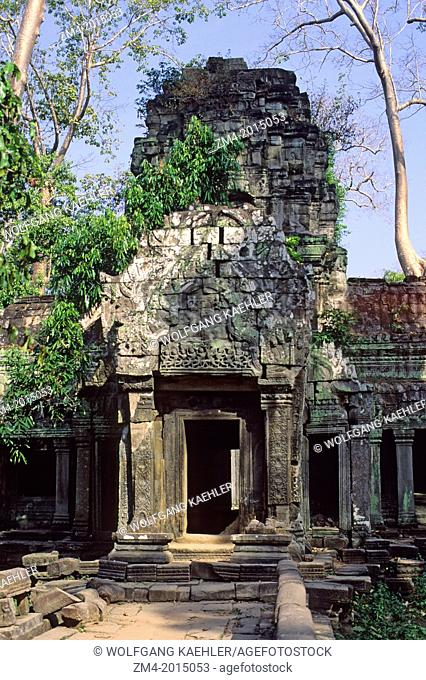 CAMBODIA, ANGKOR, TA PROHM TEMPLE, OVERGROWN WITH VEGETATION