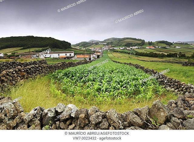The rural landscape in Esperança Velha. Graciosa island, Azores. Portugal