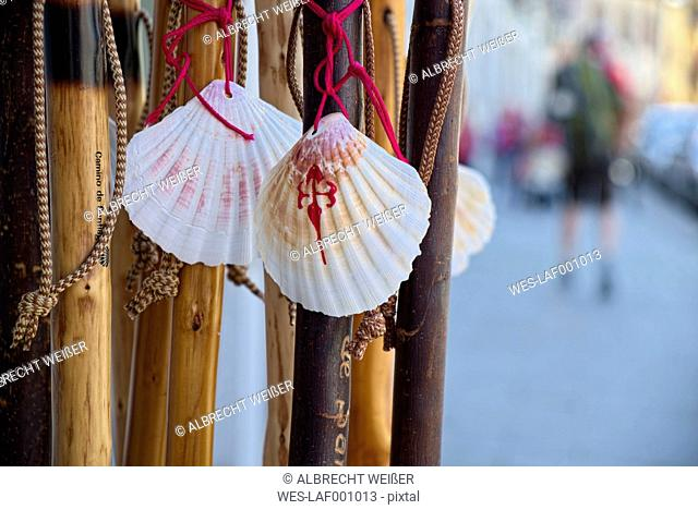Spain, The Way of St James, Cantabria, Pilgrim's staffs with shells of Saint James, pilgrim in background