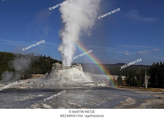 View of Castle Geyser at Yellowstone National Park