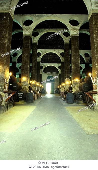 Manzanilla Bodega Antonio Barbadillo, Cathedral wine cellar, Sanlucar, Andalucia, Spain