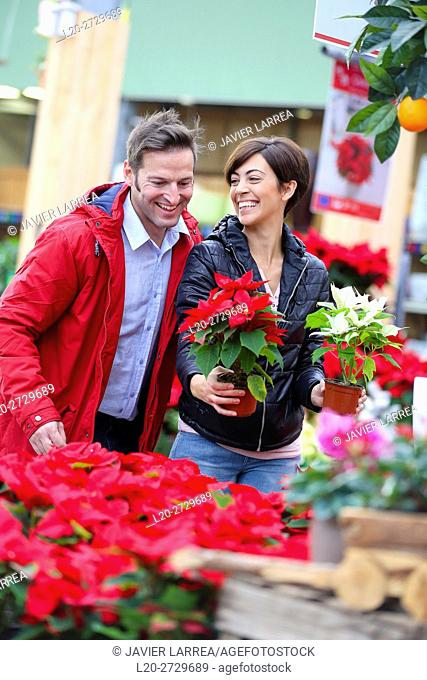 Couple buying poinsettias, Christmas, Garden center