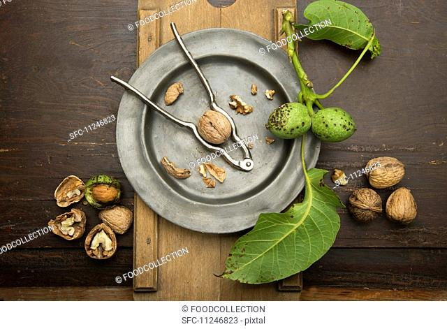 Walnuts with leaves and a nutcracker