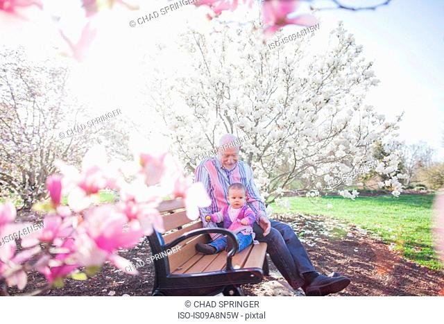 Grandfather and grandchild on park bench